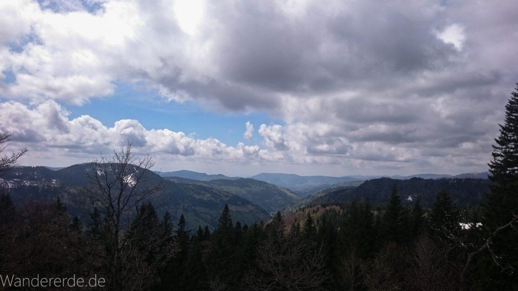 Feldberg höchster Berg im Schwarzwald schöne Aussicht Wald Berge in der Ferne