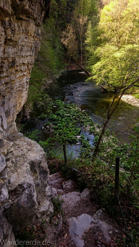 Wutachschlucht Wanderung Wutachmühle zur Schattenmühle, schöner Wald, naturbelassener Waldweg, schmaler naturbelassener Pfad, viele Bäume, Fluß Wutach mit schönen Aussichten, kühlender Schatten