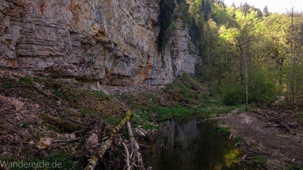 Wutachschlucht Wanderung Wutachmühle zur Schattenmühle, hohe, schmale Felswand, schöner Wald, naturbelassener Waldweg, schmaler naturbelassener Pfad, viele Bäume, Fluß Wutach, kühlender Schatten