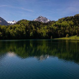 Alatsee am Ufer, blauer Himmel, strahlend klares  sauberes Wasser, Berge in der Ferne mit schneebedeckte Gipfel, saftig grüner Wald, Sonne scheint warmer Frühlingstag