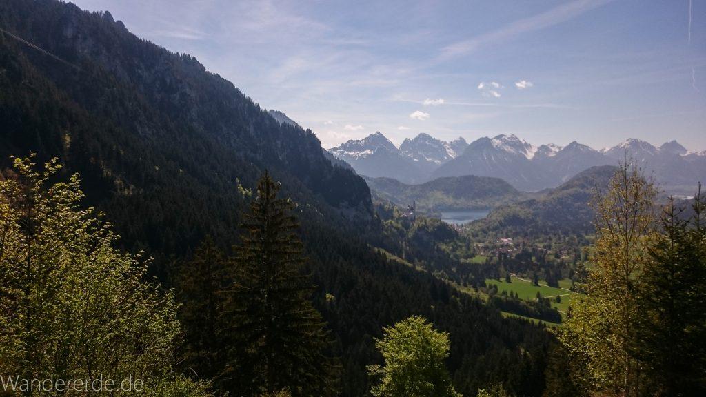 Wandern beim Tegelberg, Stadt Füssen, Parkplatz Drehhütte bis Rohrkopfhütte, Aussicht auf mächtiges Bergkette, Nadelbaum, Wiese, schneebedeckte Gipfel, Königsschlösser Neuschwanstein, See, schöne Aussicht