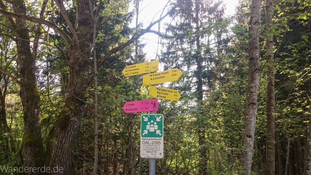 Beschilderung beim Parkplatz Drehhütte Rohrkopfhütte, Wald mit Bäumen