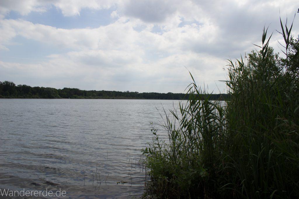 Rundweg Gördensee Havelland Brandenburg an der Havel, Blick auf Gördensee saftig grünes Schilf schöner See Aussicht auf Wald gegenüberliegende Seite