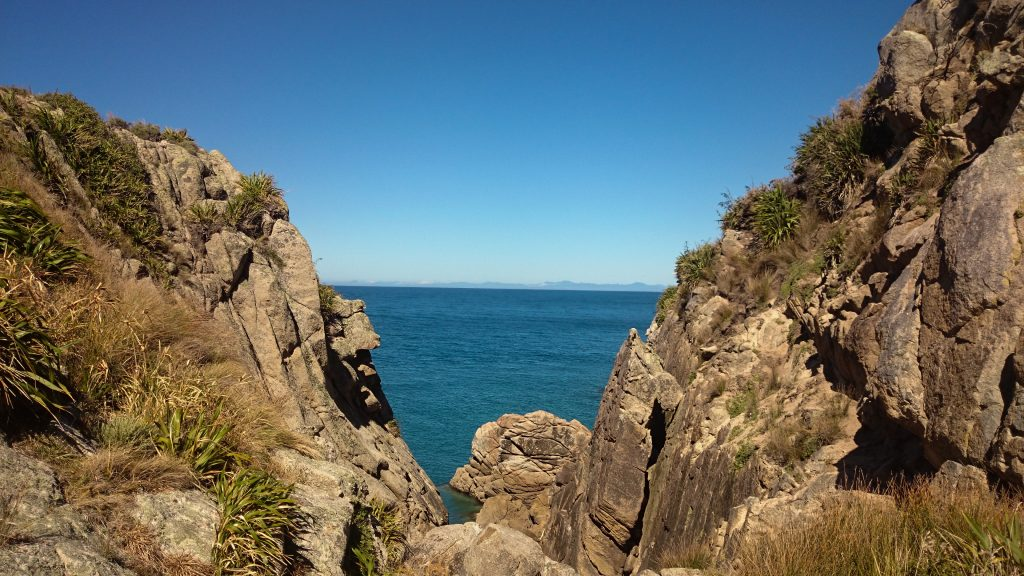 Wanderung Abel Tasman Coast Track Great Walk Südinsel Neuseeland,Wanderweg entlang traumhafter Küste im Abel Tasman Nationalpark, in der Nähe traumhafte, sichelförmige Buchten mit blaugrünem klarem frischem Wasser und dichtem grünem Wald, Sonnenschein, Palmen und Farne, goldener Sandstrand