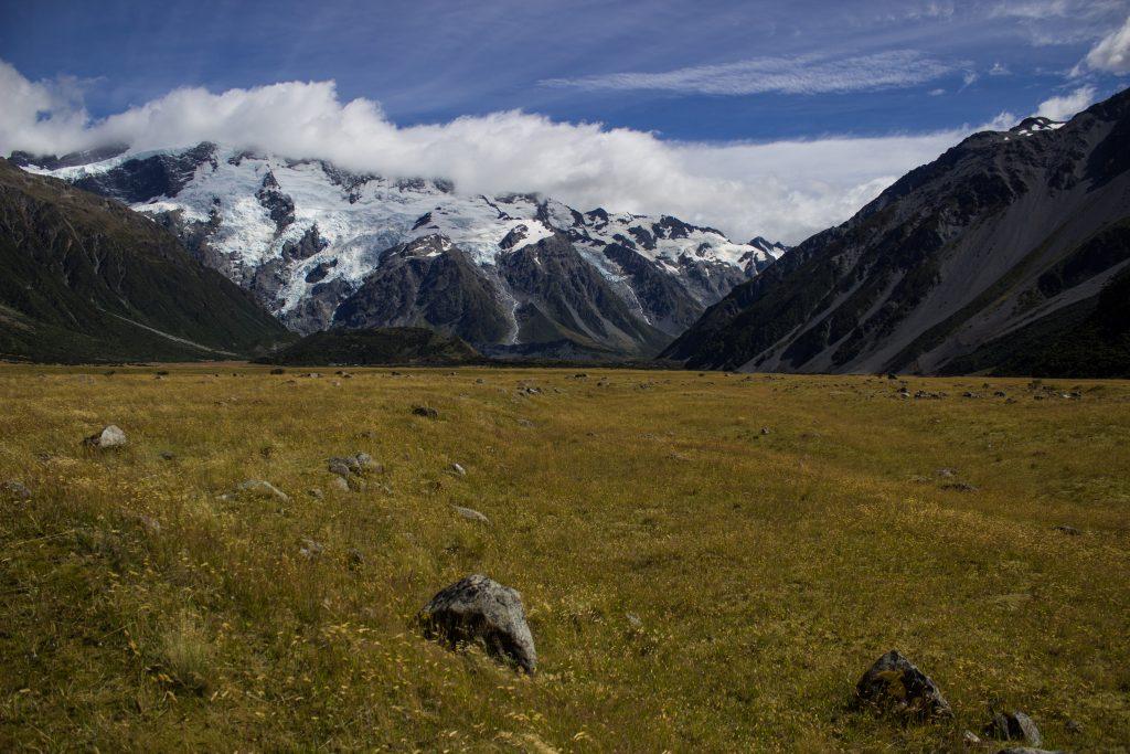Wanderungen im Mount Cook Nationalpark, Aoraki, Südinsel Neuseeland, Wanderung im Mount Cook Nationalpark, schneebedeckte Berge, raue, lebensfeindliche und doch wunderschöne Umgebung, Wiese in rauer Landschaft