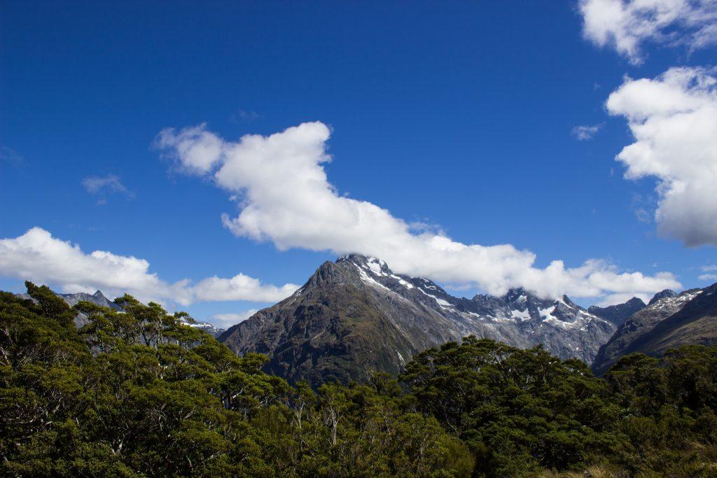 Wanderung Routeburn Track - Great Walk im Fiordland Nationalpark Südinsel Neuseeland, Wanderweg Routeburn im Fiordland Nationalpark, beeindruckende Berge mit schneebedeckten Gipfeln über der Baumgrenze, herrlicher Sommertag auf Südinsel Neuseelands, traumhafte Wanderung