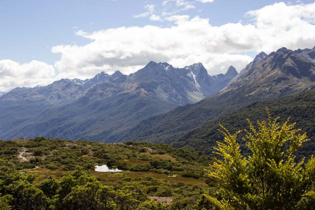 Wanderung Routeburn Track - Great Walk im Fiordland Nationalpark Südinsel Neuseeland, Wanderweg Routeburn im Fiordland Nationalpark, beeindruckende Berge mit schneebedeckten Gipfeln über der Baumgrenze, herrlicher Sommertag auf Südinsel Neuseelands, traumhafte Wanderung, Aussicht auf unzählige Berggipfel