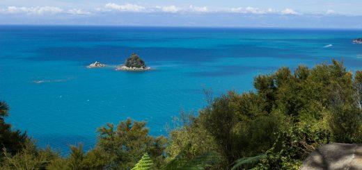 Wanderung Abel Tasman Coast Track Great Walk Südinsel Neuseeland, Aussicht auf winzige Insel im blaugrünem klarem frischem Wasser und dichtem grünem Wald, Sonnenschein, Palmen und Farne, goldener Sandstrand, Steine, Felsen