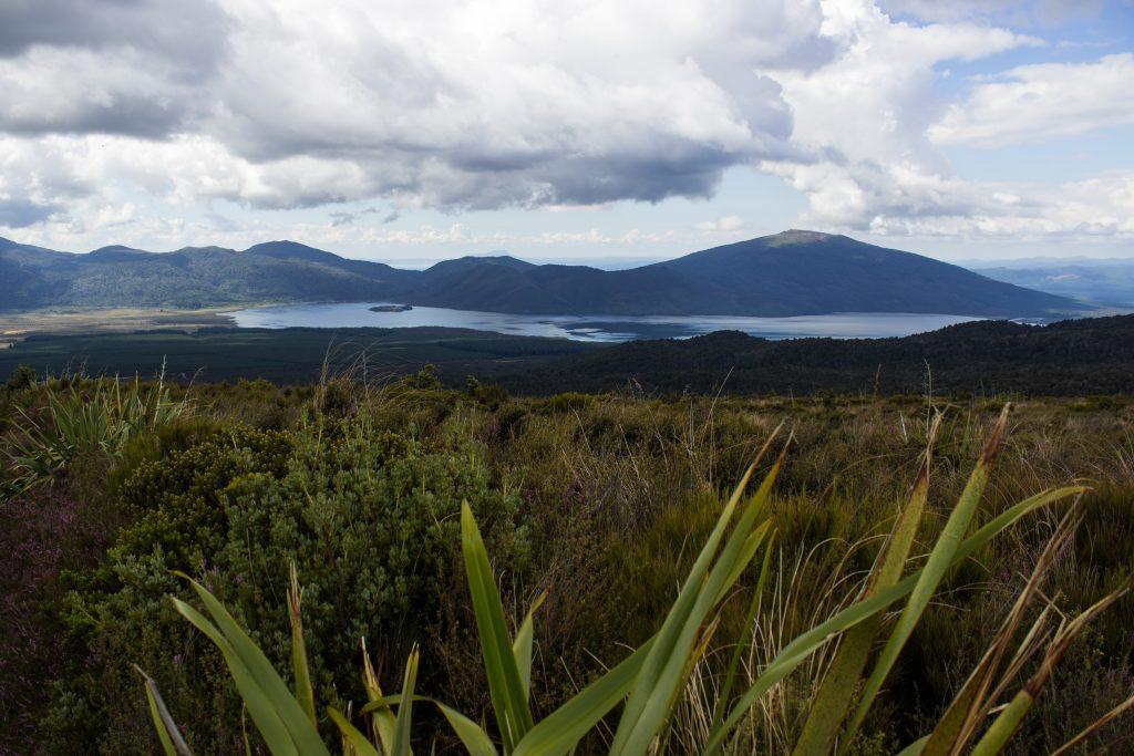 Tongariro Alpine Crossing Wanderung, Nordinsel Neuseeland, tolle Aussicht auf Berge, Fluss bei Wanderung Tongarrio Alpine Crossing, unter Baumgrenze noch saftig grün