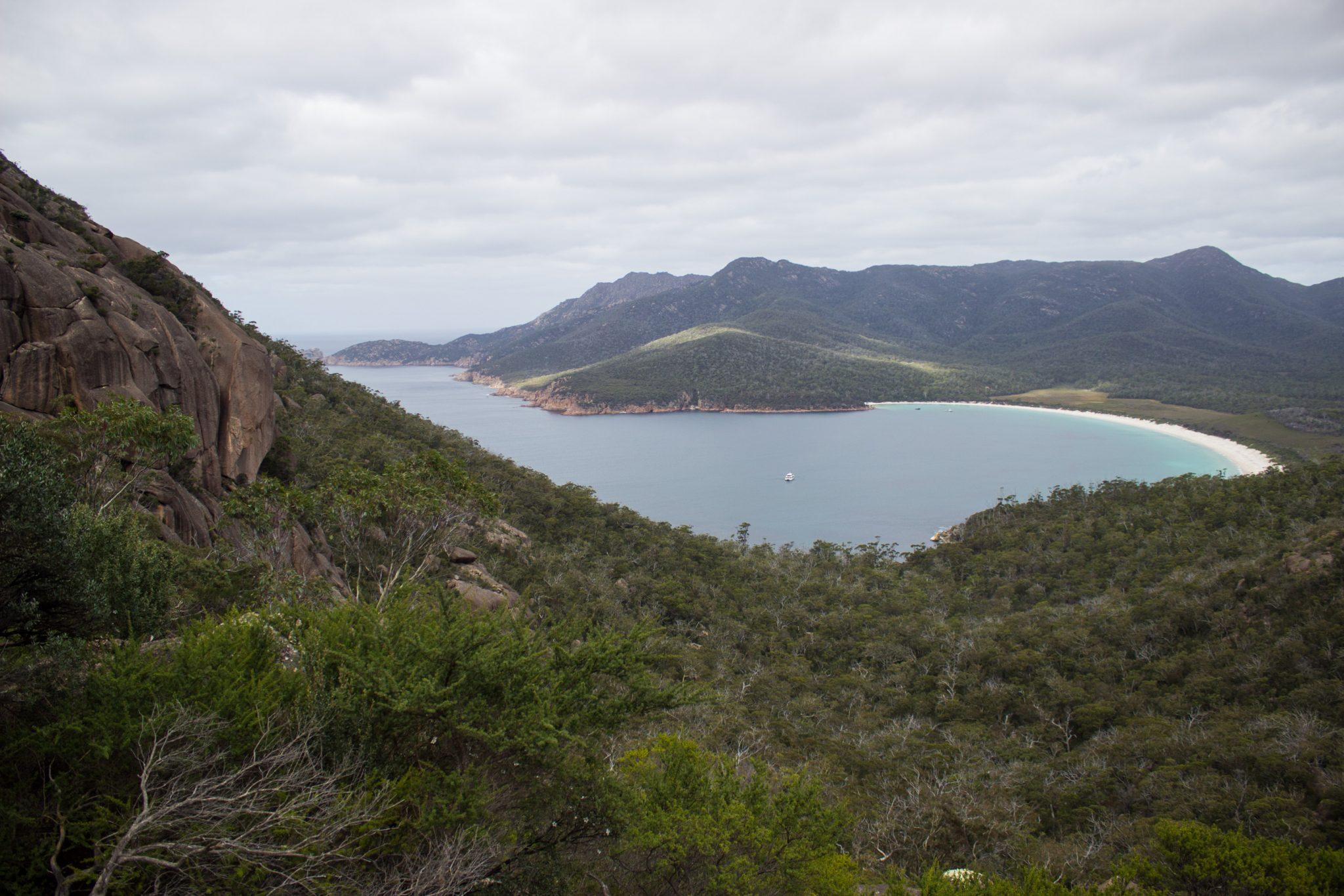Lookout, Aussichtspunkt auf Wineglass Bay, Bucht im traumhaften Freycinet Nationalpark in Tasmanien, saftig grüner Wald, Berge