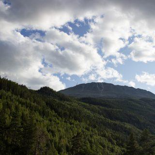 Wanderung auf den Gaustatoppen in Norwegen, startet in der Nähe des Ortes Rjukan, Blick auf den Berg Gausta umgeben von Wald, schöner beeindrucker Gaustatoppen