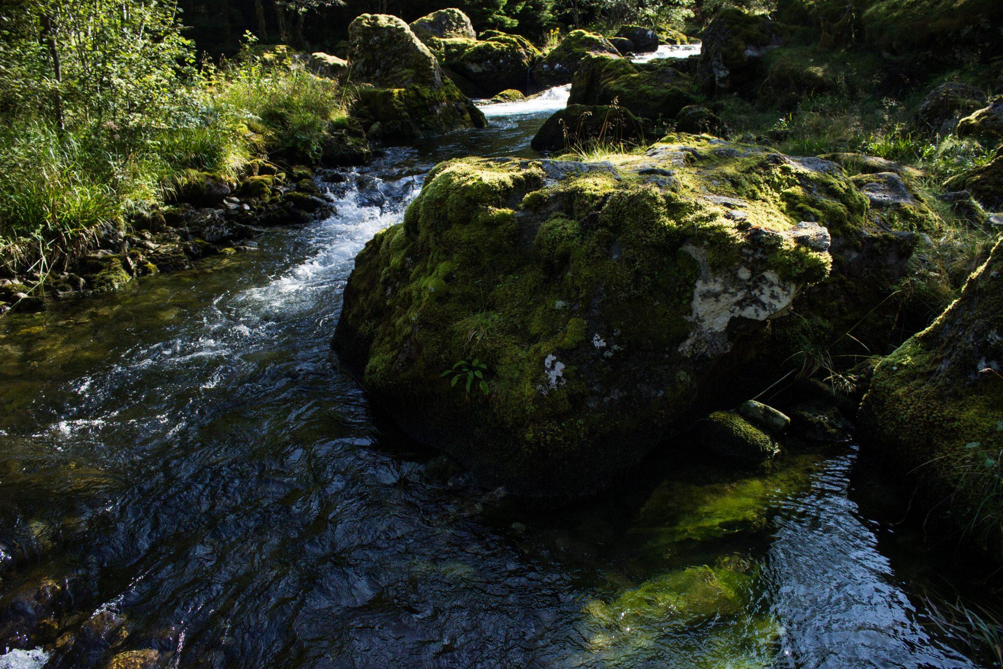 Wanderung vom Ort Sundal bis zum Gletscher Bondhusbreen im Folgefonna Nationalpark, kristallklares Wasser im Fluß, mit Moos bewachsene Steine