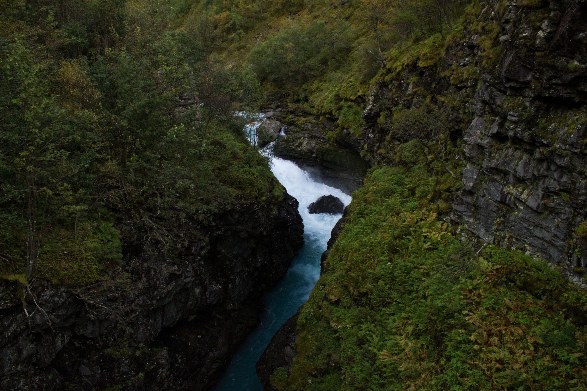 Wanderung zum Vettisfossen Wasserfall, höchster unregulierter Wasserfall in Norwegen, Blick von Brücke auf sehr klares Wasser im Fluß und schönen Wald