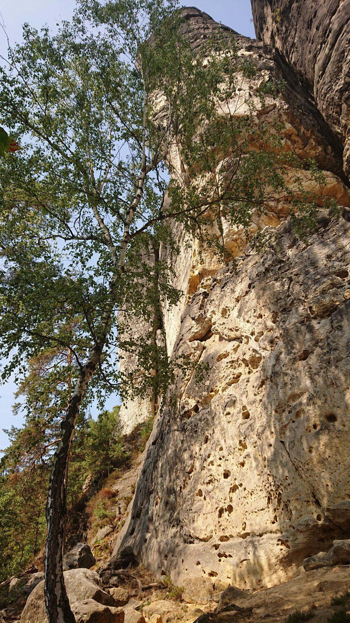 Zeughaus Roß- und Goldsteig Richterschlüchte im Kirnitzschtal wandern, Wanderweg im Wanderparadies Sächsische Schweiz mit vielen tollen Aussichten, riesiger Felsennationalpark, sehr hohe und steile Felsen