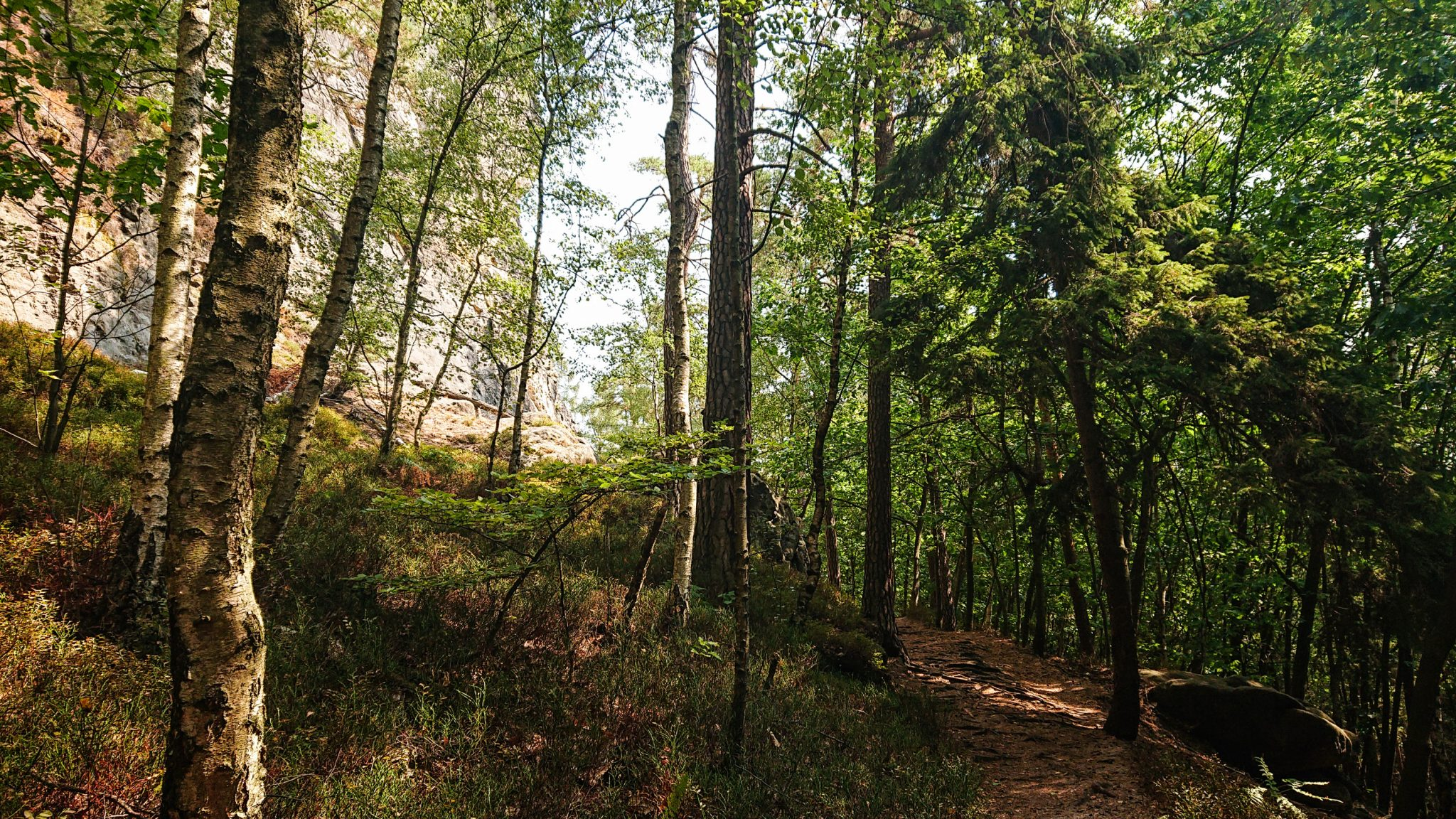 Zeughaus Roß- und Goldsteig Richterschlüchte im Kirnitzschtal wandern, Wanderweg im Wanderparadies Sächsische Schweiz mit vielen tollen Aussichten, riesiger Felsennationalpark, schattenspendender Wald