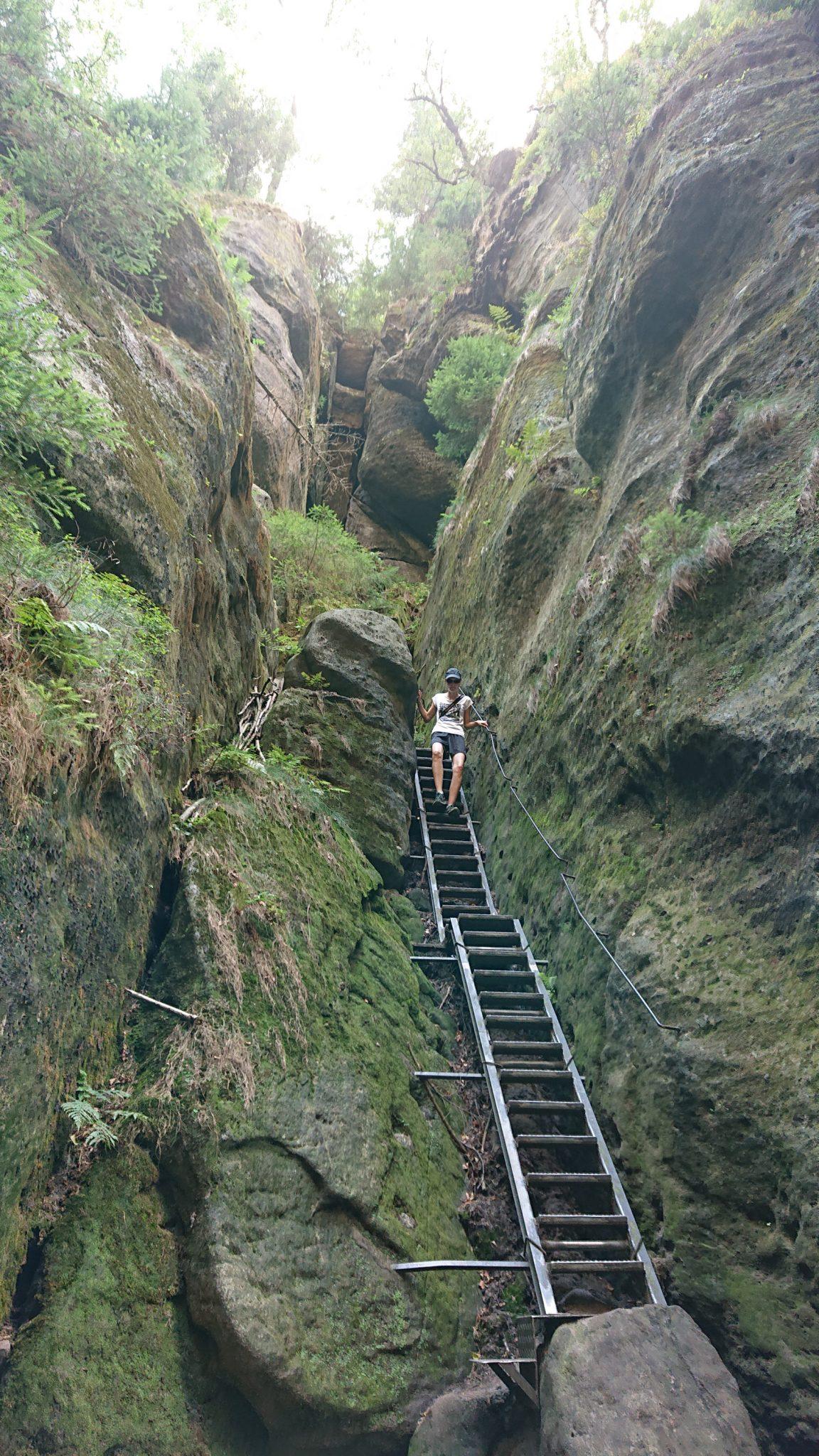 Hohe Liebe Schrammsteine Carolafelsen, Wanderweg im Wanderparadies Sächsische Schweiz mit vielen tollen Aussichten, riesiger Felsennationalpark, Metallleiter