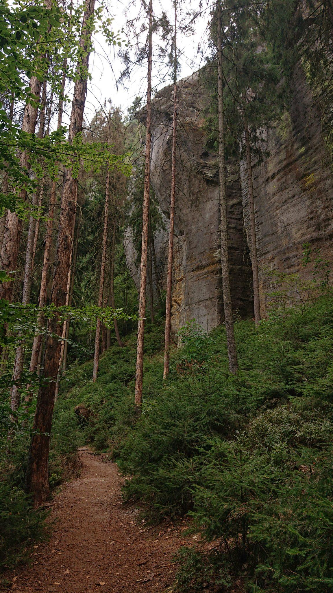 Affensteinweg Frienstein Carolafelsen und Wilde Hölle, Wanderweg im Wanderparadies Sächsische Schweiz mit vielen tollen Aussichten, riesiger Felsennationalpark, schöner Wald, Weg zu Idagrotte