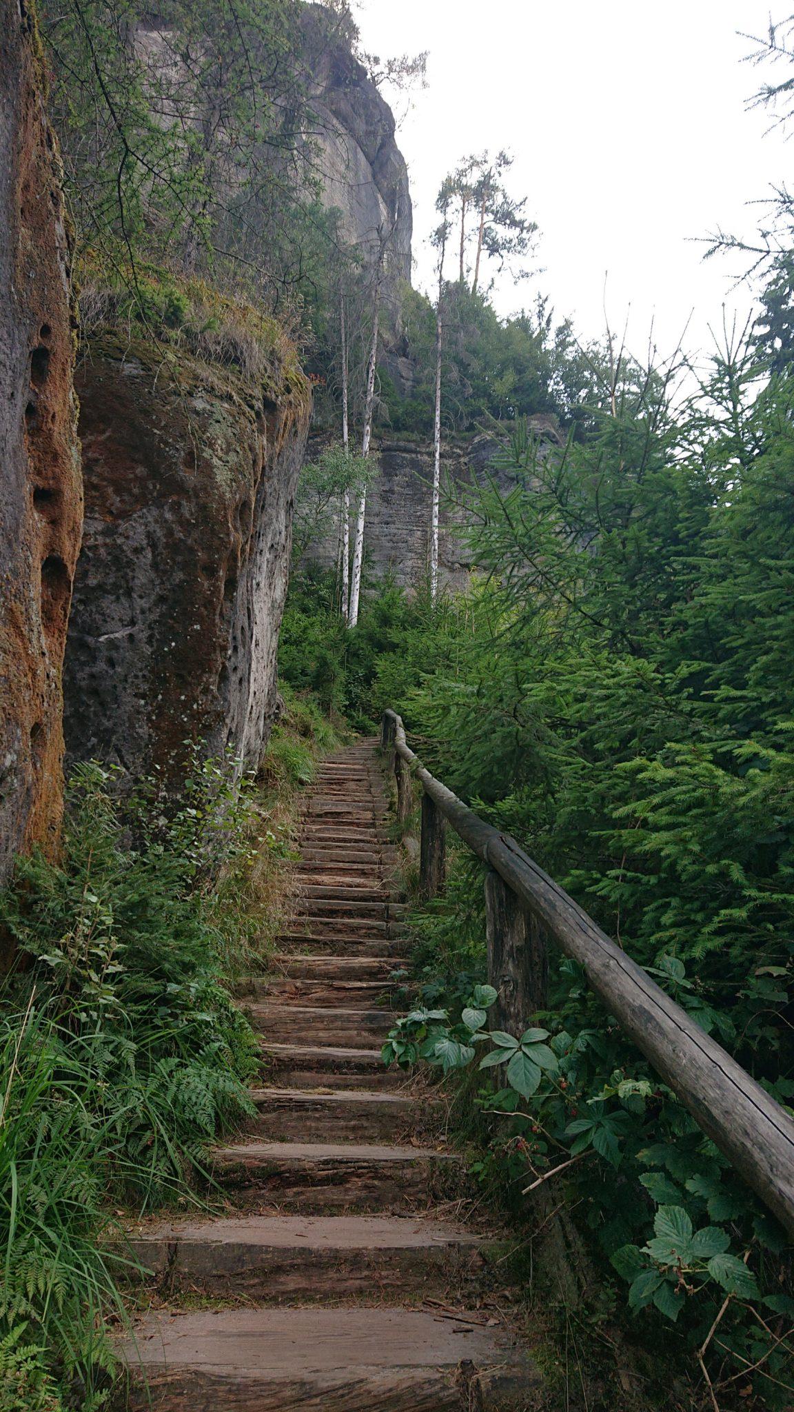 Affensteinweg Frienstein Carolafelsen und Wilde Hölle, Wanderweg im Wanderparadies Sächsische Schweiz mit vielen tollen Aussichten, riesiger Felsennationalpark, schöner Wald, unzählige Treppenstufen auf den Frienstein und zur Idagrotte