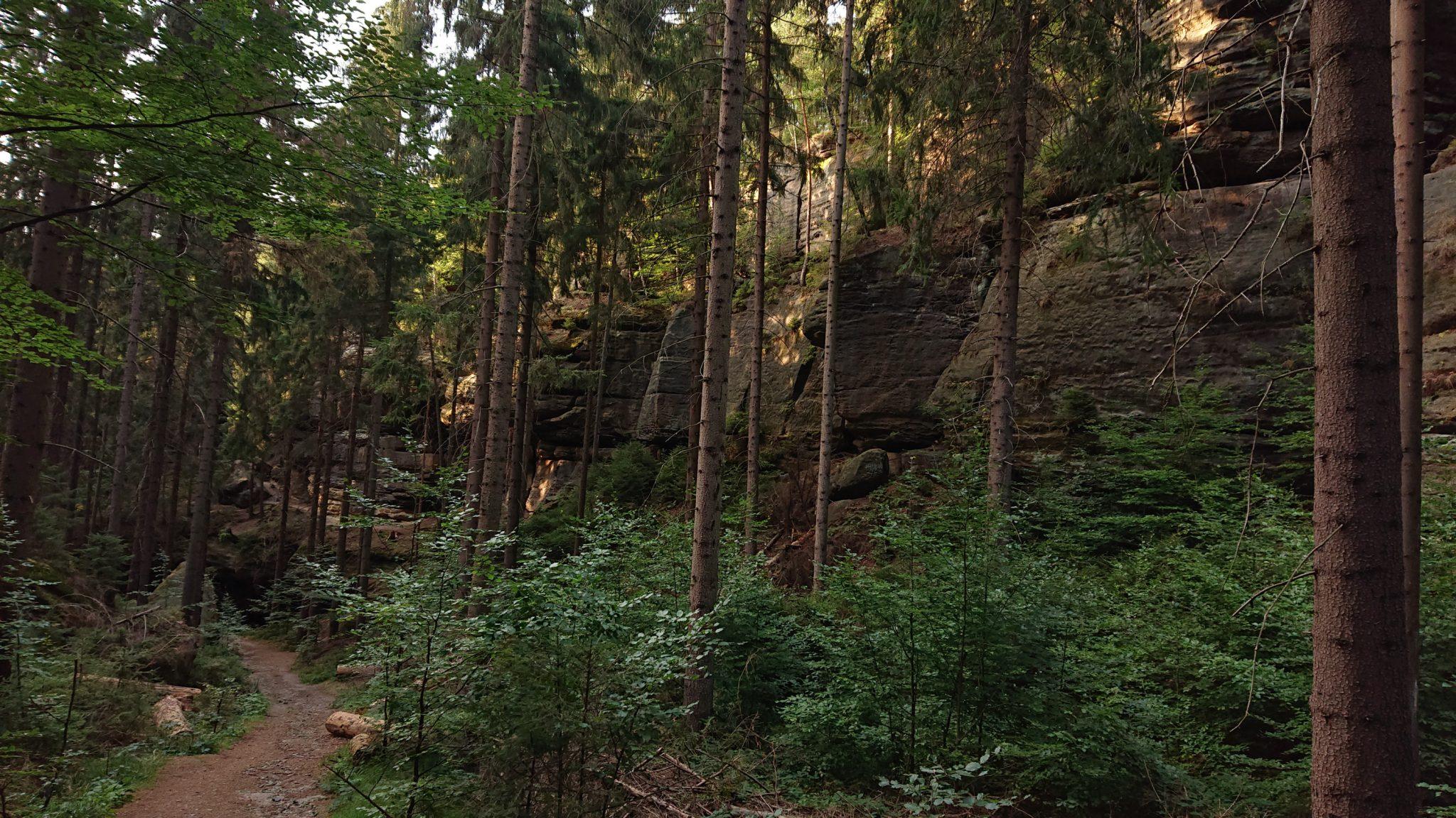 Hohe Liebe Schrammsteine Carolafelsen, Wanderweg im Wanderparadies Sächsische Schweiz mit vielen tollen Aussichten, riesiger Felsennationalpark, schöne naturbelassene Wege