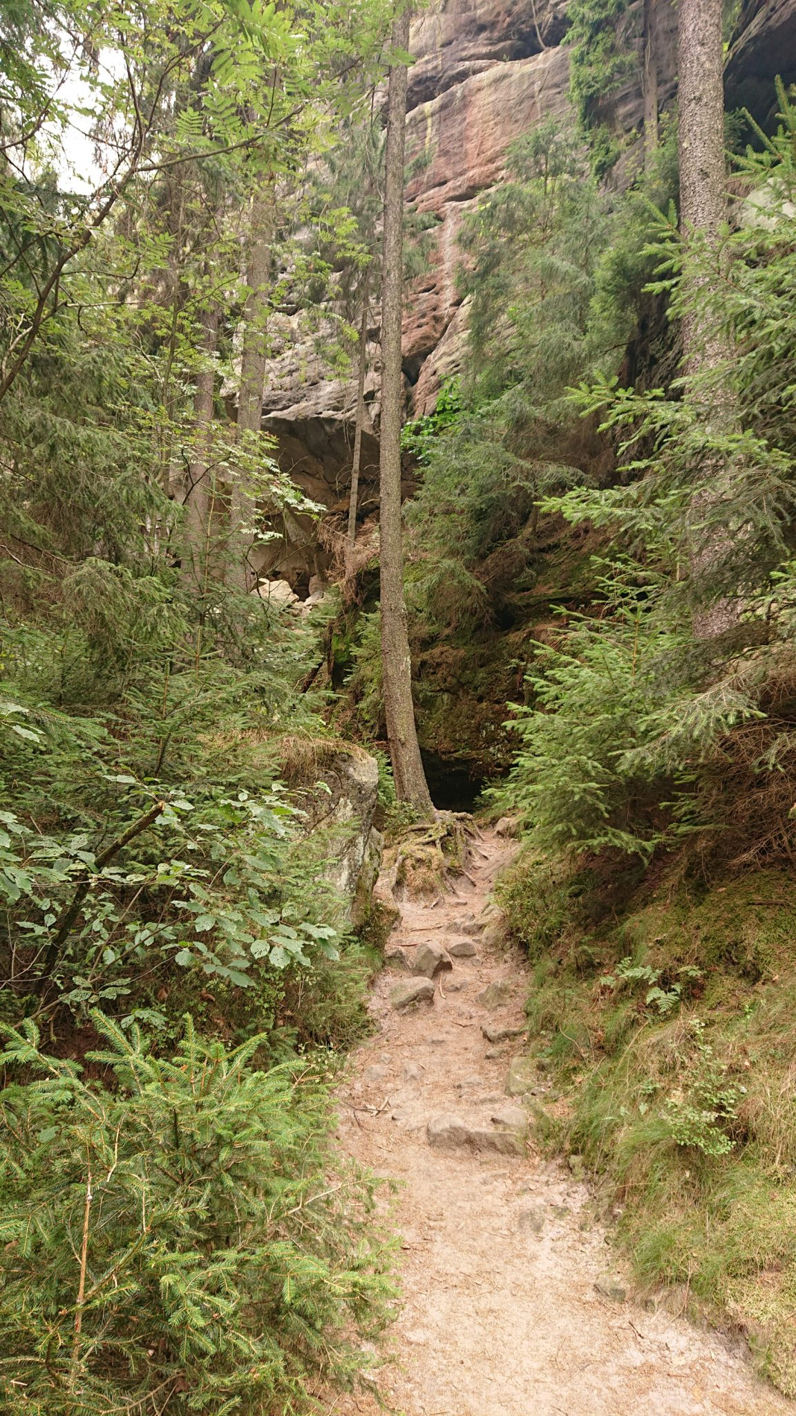 Wanderung durch Polenztal zur Bastei und zu Schwedenlöcher, Wanderweg zur Gautschgrotte in der Nähe vom Polenztal