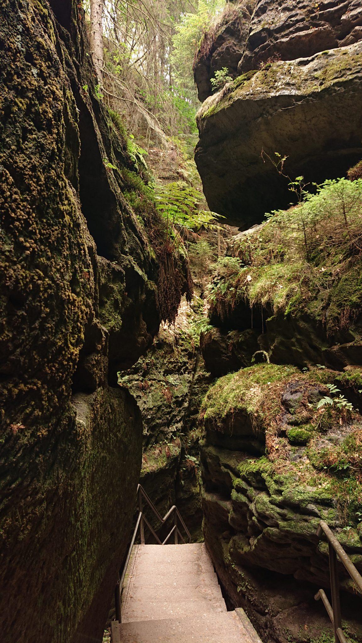 Wanderung durch Polenztal zur Bastei und zu Schwedenlöcher, Wanderweg durch die Schwedenlöcher, schmale Pfade entlang moosbewachsener Felsen, steile und schmale Treppen