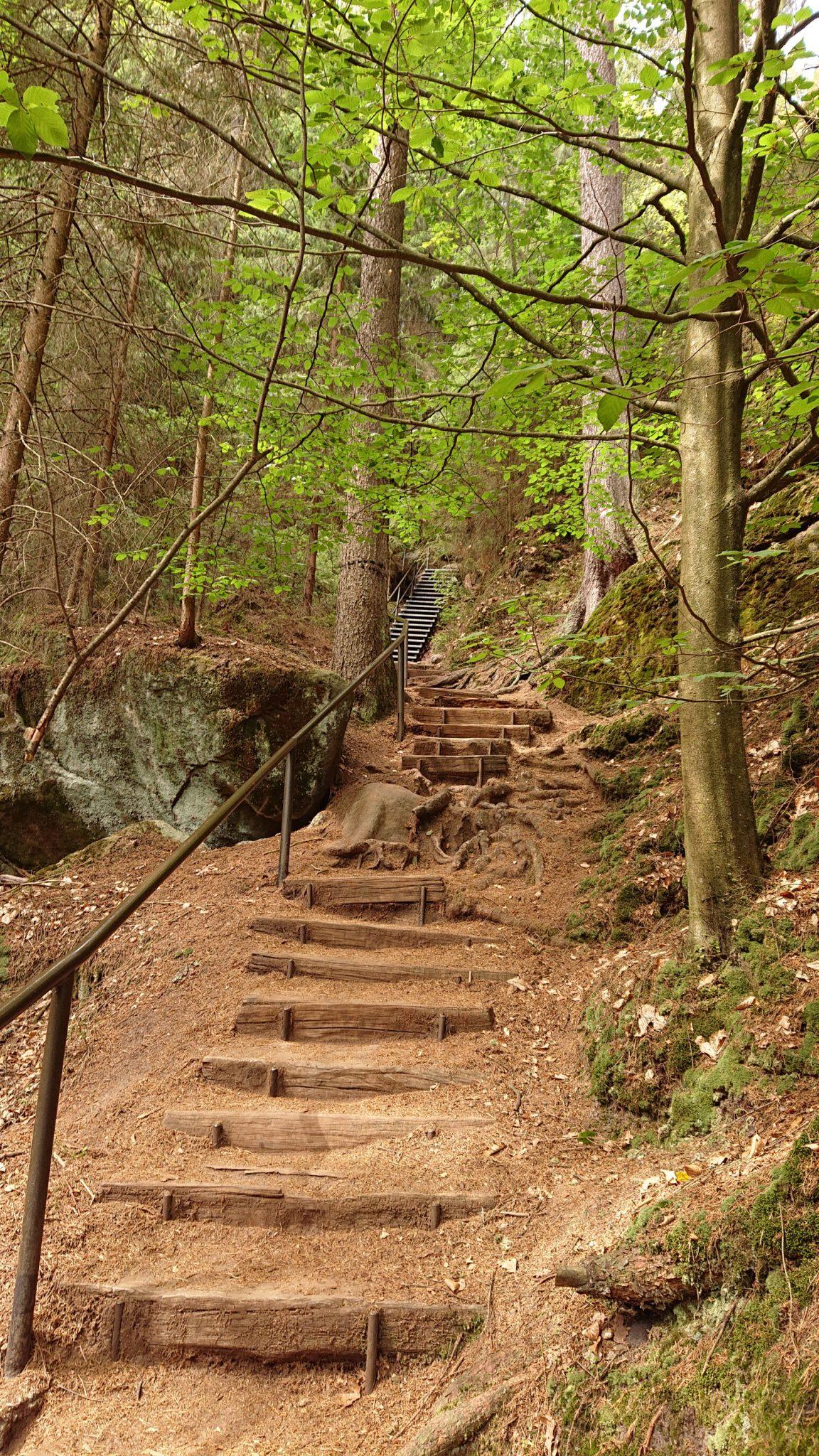 Kirnitzschklamm Hermanseck und Königsplatz im Kirnitzschtal wandern, Wanderweg im Wanderparadies Sächsische Schweiz mit vielen tollen Aussichten, riesiger Felsennationalpark, immer wieder viele Treppen zu überwinden