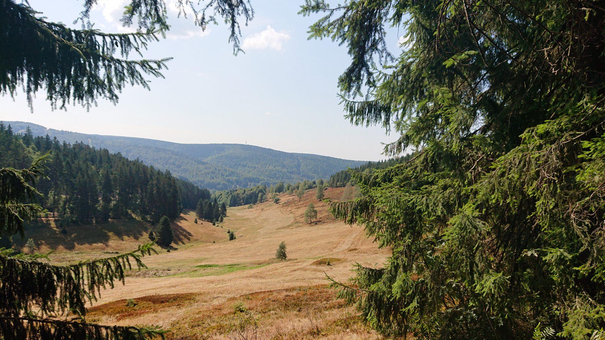 Großer Beerberg Schneekopf und Teufelskanzel, Gipfeltour Wanderung im Thüringer Wald