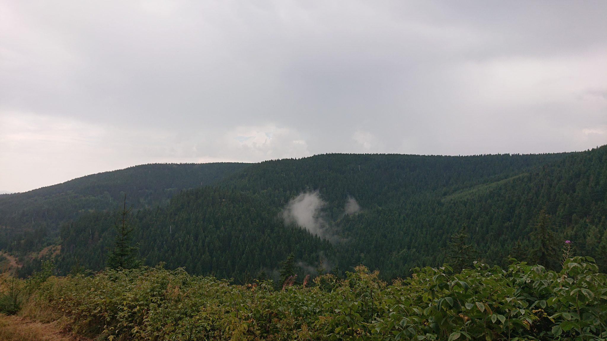 Großer Beerberg Schneekopf und Teufelskanzel, Gipfeltour Wanderung im Thüringer Wald, Aussicht auf Thüringer Wald