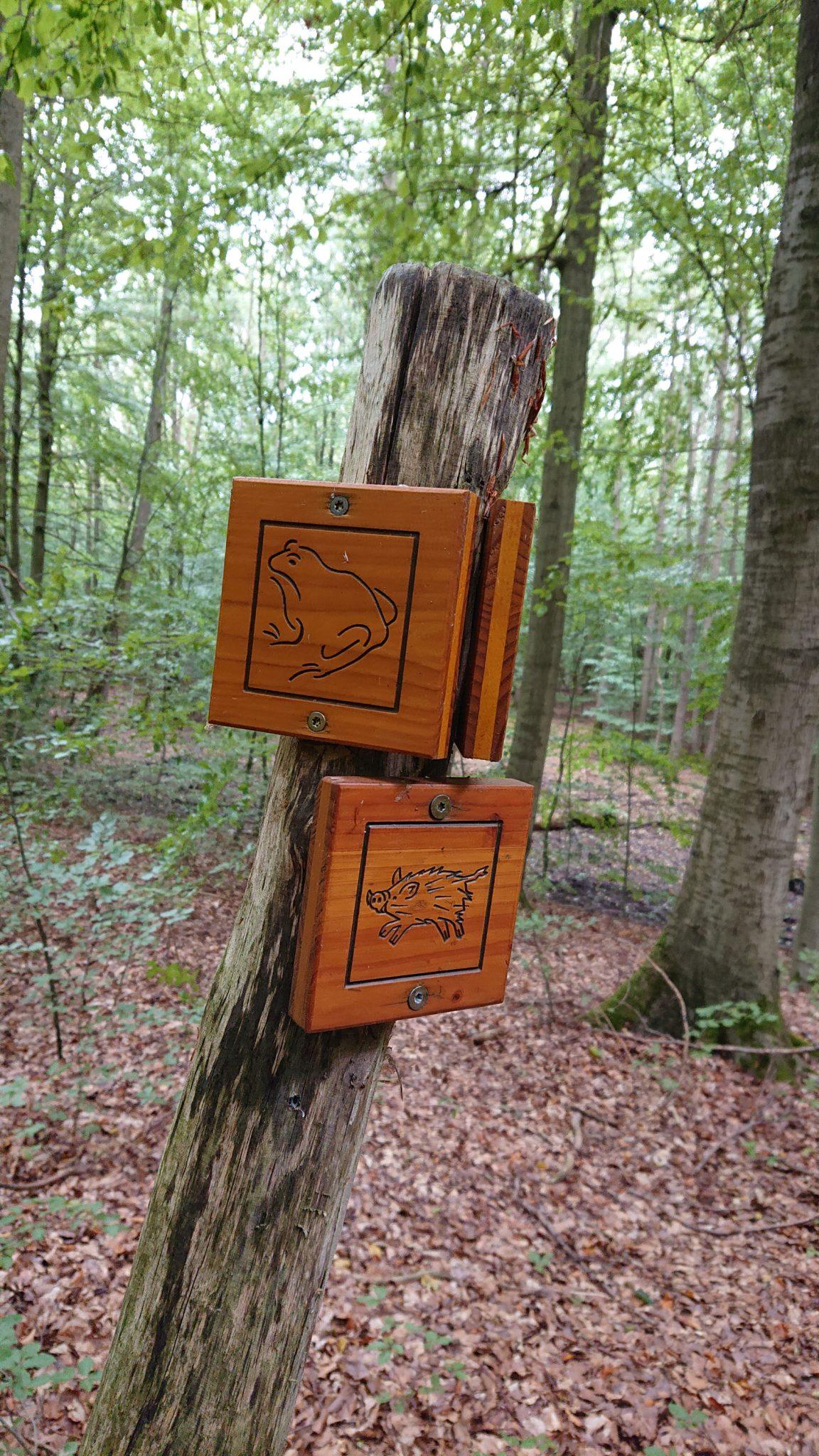 Nationalpark Hainich Saugrabenweg und Betteleichenweg wandern, Wegmarkierung mit Bildern von Tieren als Orientierung