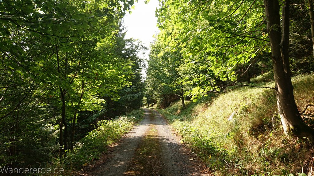 Dreibrodesteine Wanderung im Harz bei Sankt Andreasberg