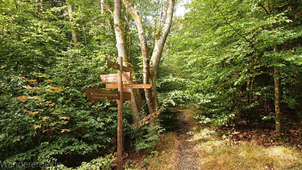 Von Bad Harzburg zur Rabenklippe und durchs Eckertal, Wanderung im Harz in Niedersachsen, Wegweiser Schild mit Wanderzielen