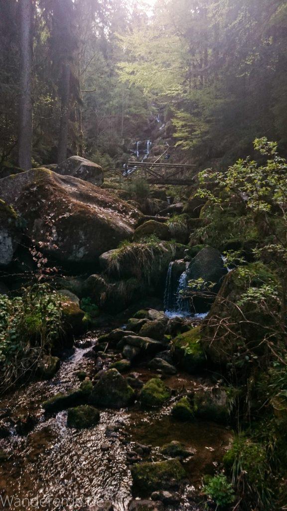 Gertelbach Wasserfälle, umringt von schönem Wald, Sonne glitzert im Wasser