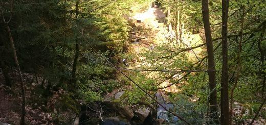 Gertelbach Wasserfälle, umringt von schönem Wald