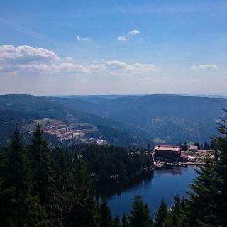Mummelsee Hornisgrinde - Genießerpfad, Ausicht auf Mummelsee und umliegende Wälder