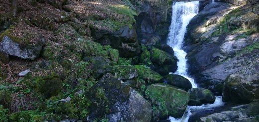 Die Triberger Wasserfälle, große Steine, umringt von schönem Wald
