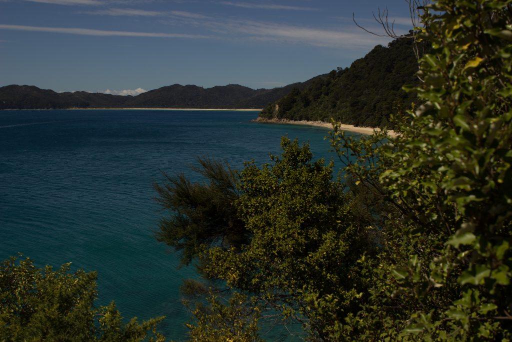 Wanderung Abel Tasman Coast Track Great Walk Südinsel Neuseeland, Aussicht auf traumhafte, sichelförmige Bucht mit blaugrünem klarem frischem Wasser und dichtem grünem Wald, Sonnenschein, Palmen und Farne, goldener Sandstrand