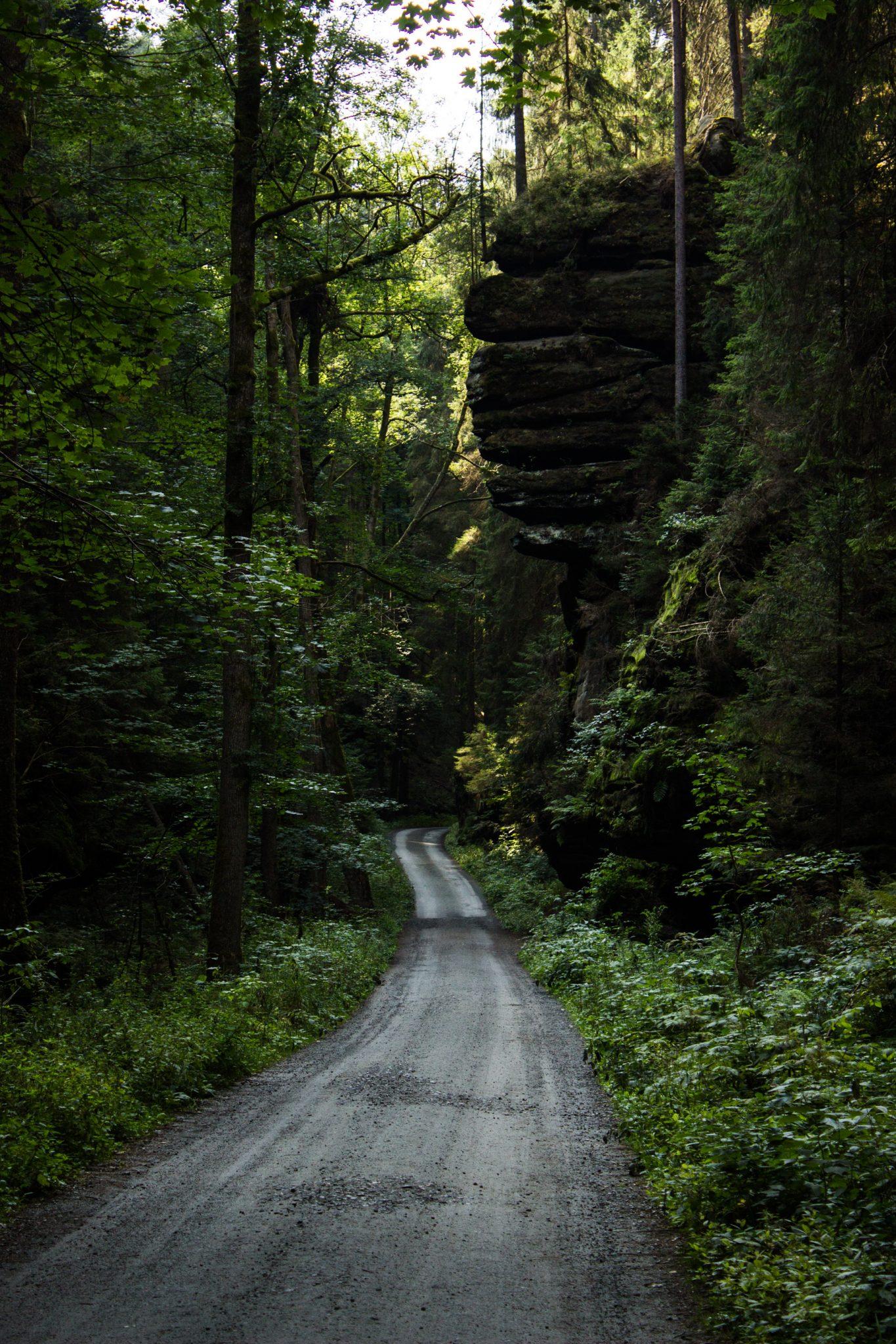 Zeughaus Roß- und Goldsteig Richterschlüchte im Kirnitzschtal wandern, Wanderweg im Wanderparadies Sächsische Schweiz mit vielen tollen Aussichten, riesiger Felsennationalpark, breiterer Wegabschnitt