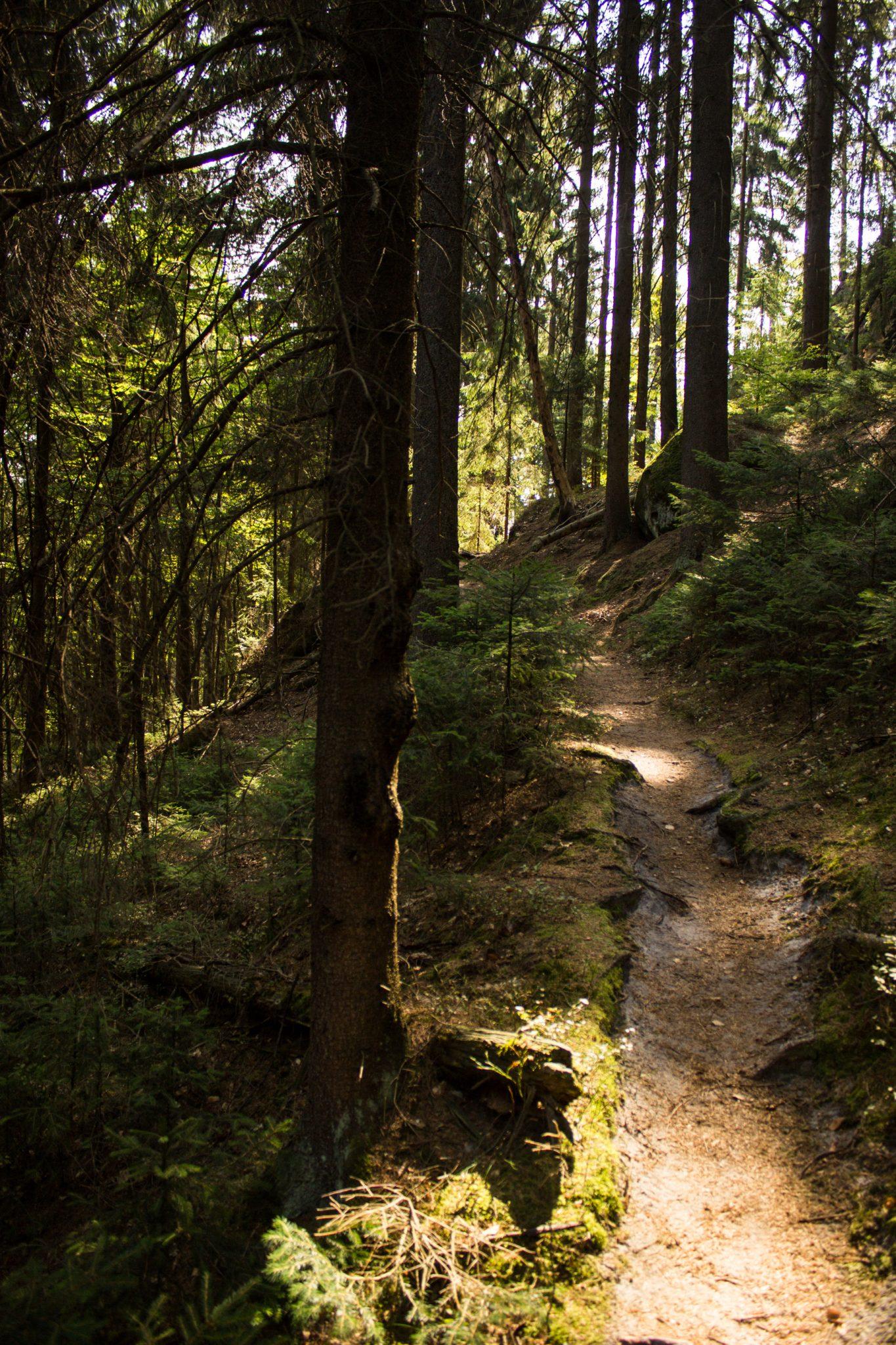 Zeughaus Roß- und Goldsteig Richterschlüchte im Kirnitzschtal wandern, Wanderweg im Wanderparadies Sächsische Schweiz mit vielen tollen Aussichten, riesiger Felsennationalpark, oft sind viele Höhenmeter zu überwinden