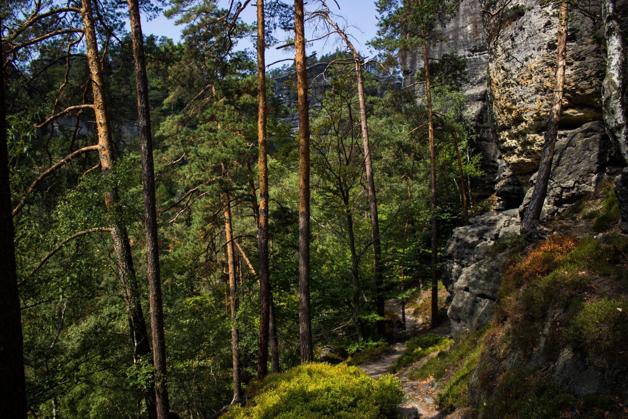 Zeughaus Roß- und Goldsteig Richterschlüchte im Kirnitzschtal wandern, Wanderweg im Wanderparadies Sächsische Schweiz mit vielen tollen Aussichten, riesiger Felsennationalpark, immer abwechslungsreiche Wege