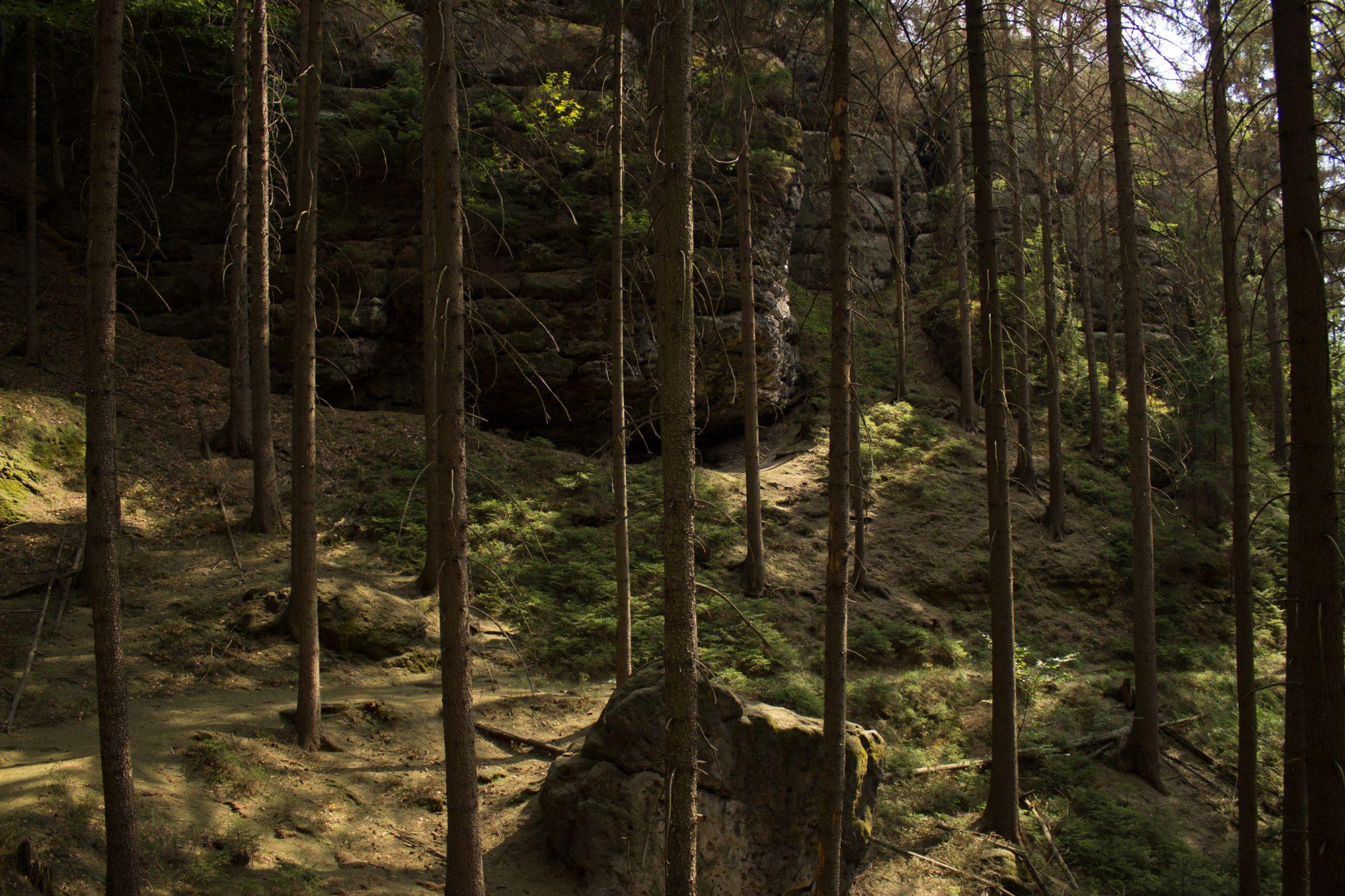 Zeughaus Hickelhöhle und Großer Reitsteig - im Kirnitzschtal wandern, Wanderweg im Wanderparadies Sächsische Schweiz mit vielen tollen Aussichten, riesiger Felsennationalpark