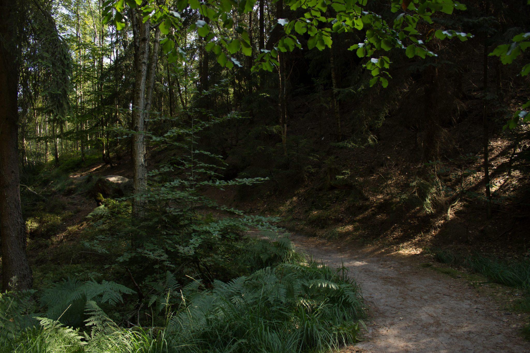 Hohe Liebe Schrammsteine Carolafelsen, Wanderweg im Wanderparadies Sächsische Schweiz mit vielen tollen Aussichten, riesiger Felsennationalpark, schöner Weg