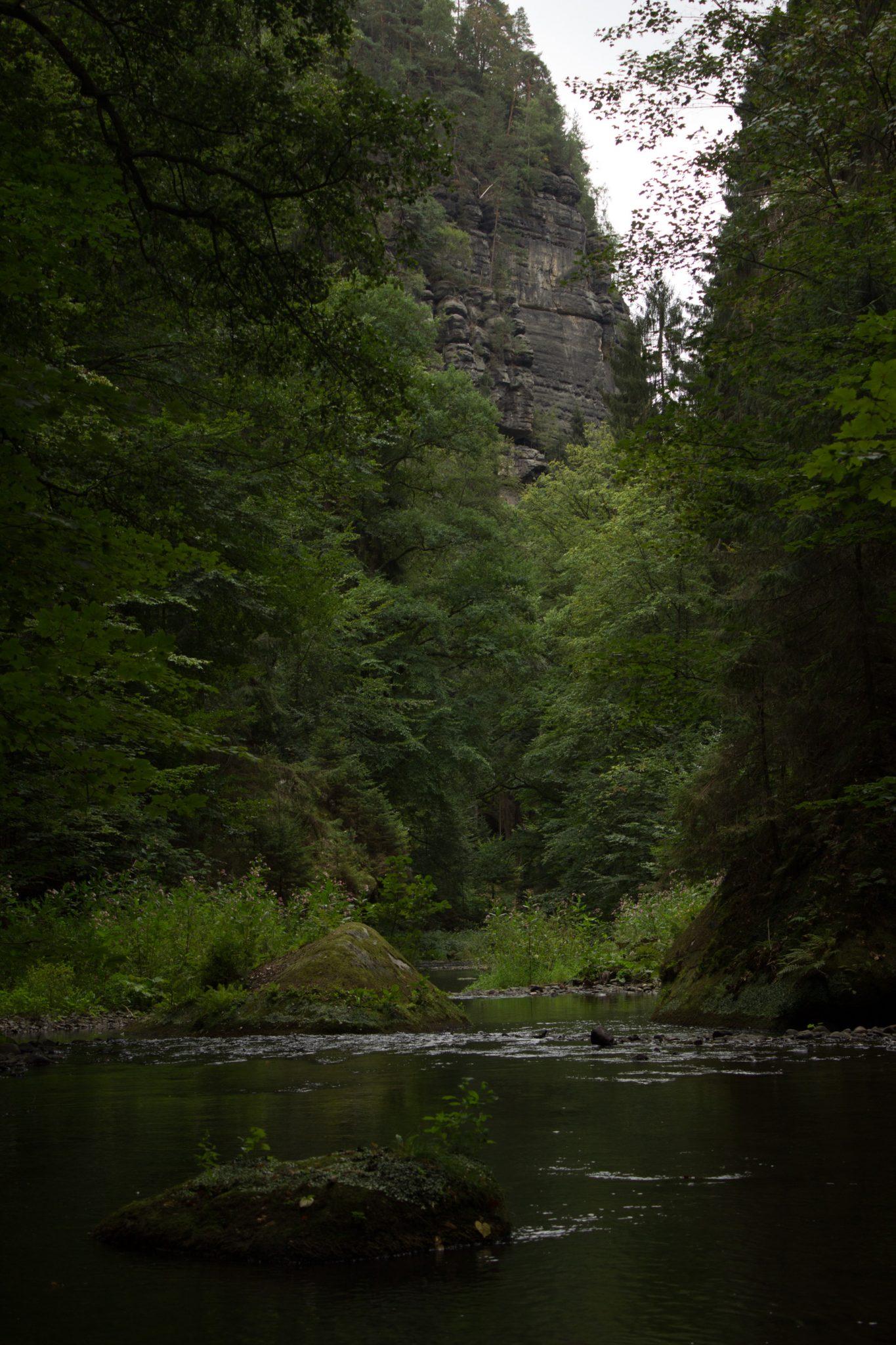 Wanderung durch Polenztal zur Bastei und zu Schwedenlöcher, Wanderweg im Polenztal, saftig grüner Wald, Weg neben Fluß Polenz, sehr hohe Felsen spenden Schatten im Tal