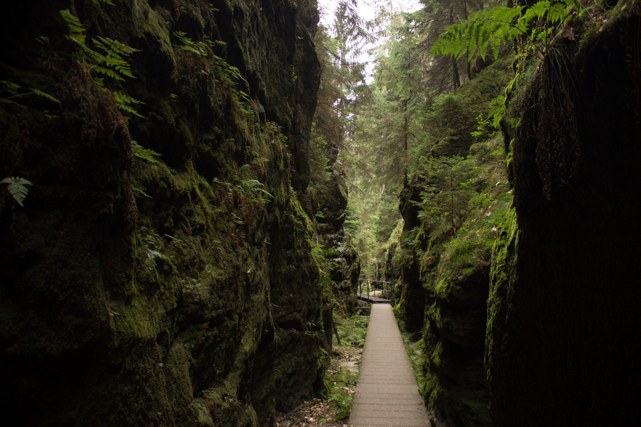 Wanderung durch Polenztal zur Bastei und zu Schwedenlöcher, Wanderweg durch die Schwedenlöcher, schmale Pfade entlang moosbewachsener Felsen, steile und schmale Treppen durch schönen Wald