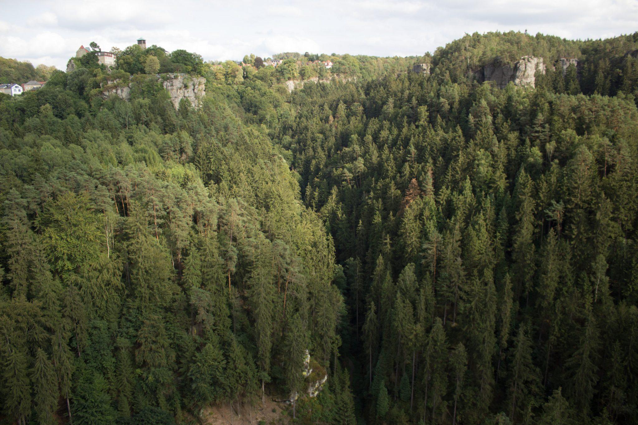 Wanderung durch Polenztal zur Bastei und zu Schwedenlöcher, Aussicht auf das schöne Polenztal und bis nach Hohnstein von Aussichtspunkt Hockstein