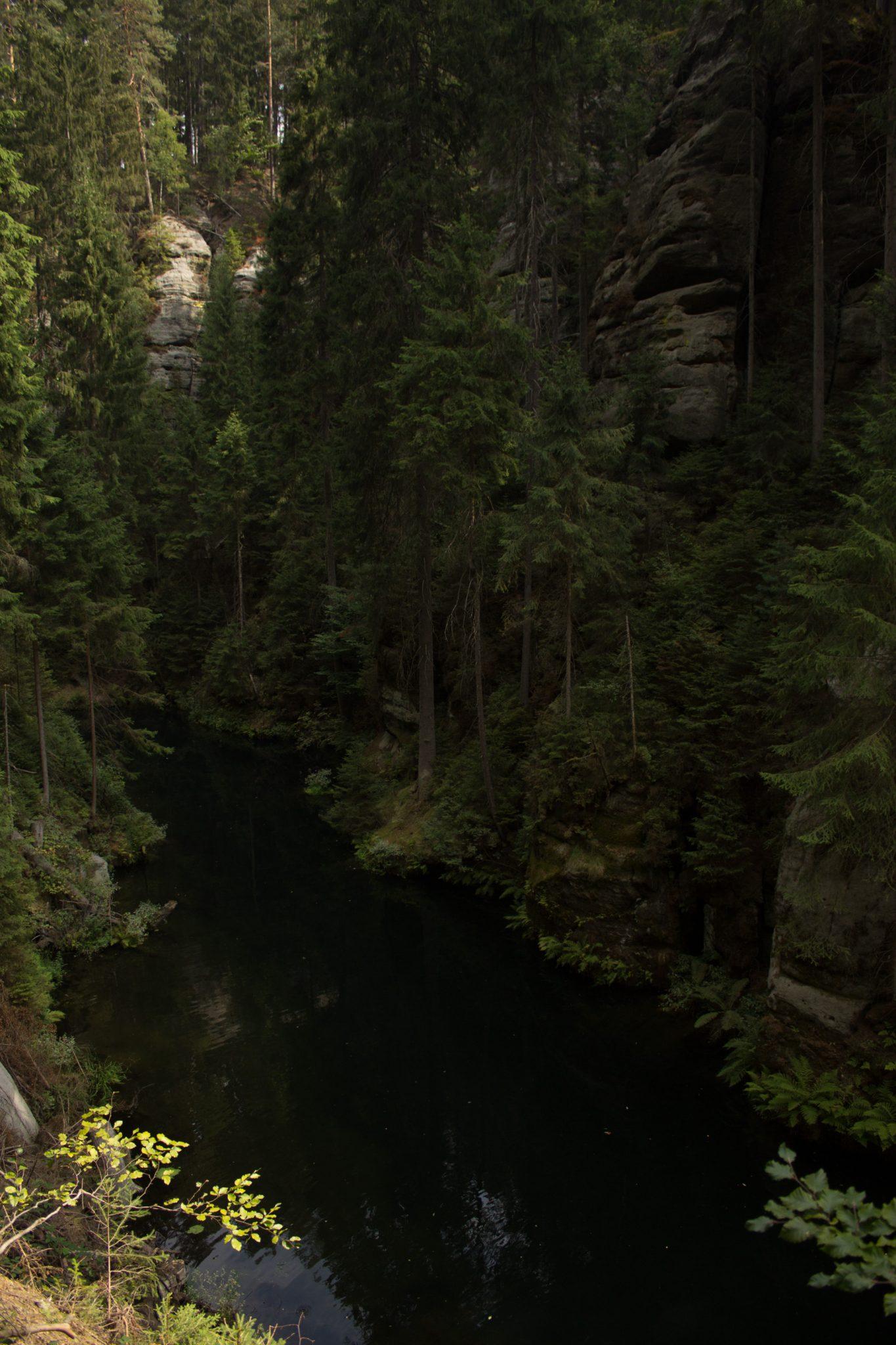 Kirnitzschklamm Hermanseck und Königsplatz im Kirnitzschtal wandern, Wanderweg im Wanderparadies Sächsische Schweiz mit vielen tollen Aussichten, riesiger Felsennationalpark, Blick in die Kirnitzschklamm vom Wanderweg aus