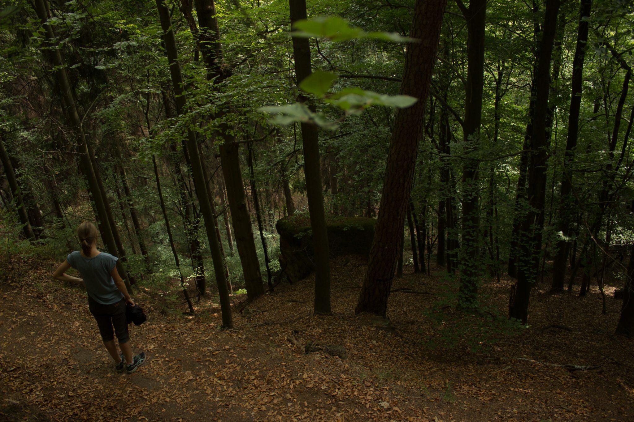 Kirnitzschklamm Hermanseck und Königsplatz im Kirnitzschtal wandern, Wanderweg im Wanderparadies Sächsische Schweiz mit vielen tollen Aussichten, riesiger Felsennationalpark, Aussicht nach unten, viele Höhenmeter zurückgelegt