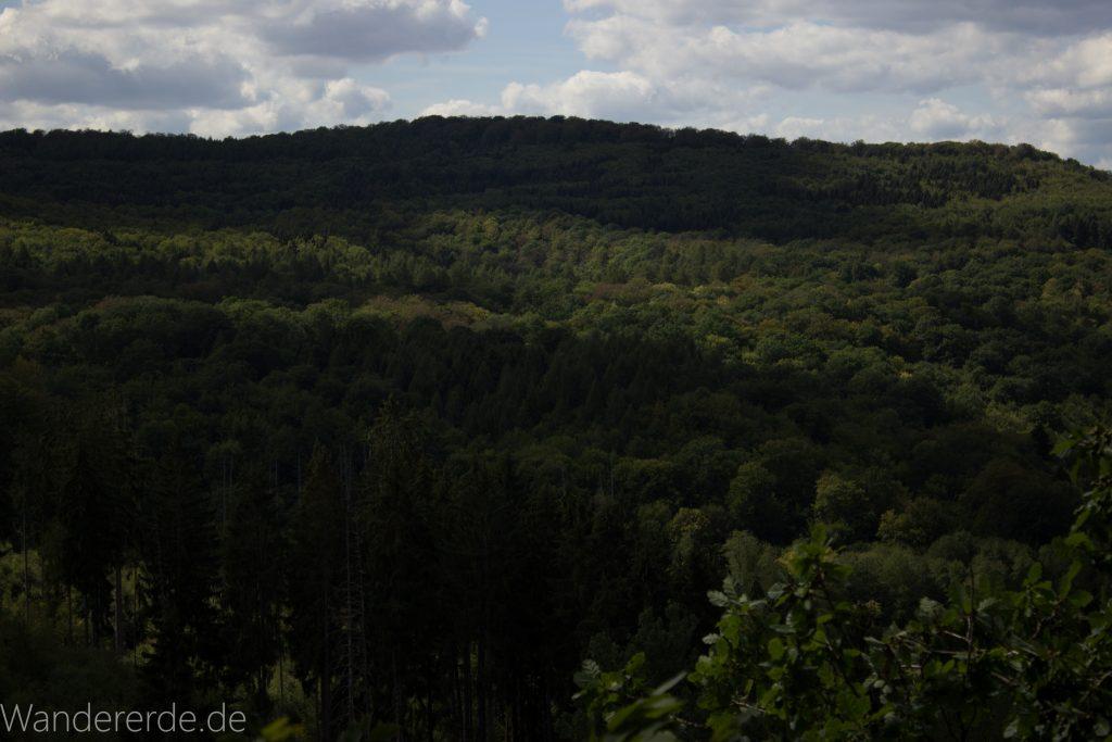 Urwaldsteig von Hemfurth nach Bringhausen zur Jausenstation, Nationalpark Kellerwald Edersee, schöne Aussicht auf Nationalpark, großer Wald, toller Sommertag