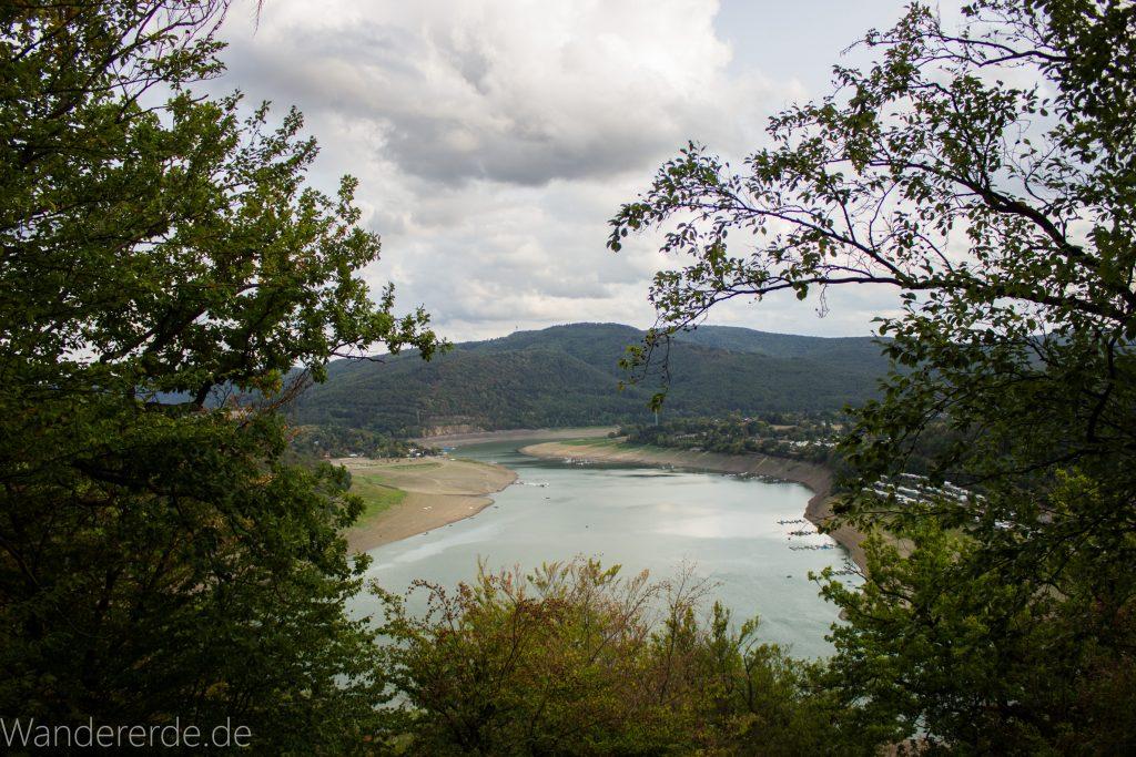 Wanderung um die Mühlecke, lohnenswerte kurze Wanderung über schmalen Pfad, tolle Aussicht auf Edersee, Krüppelbaum, schöne Lichtstimmung, saftig grüner Wald, Rundweg um Mühlecke, kleiner Berg