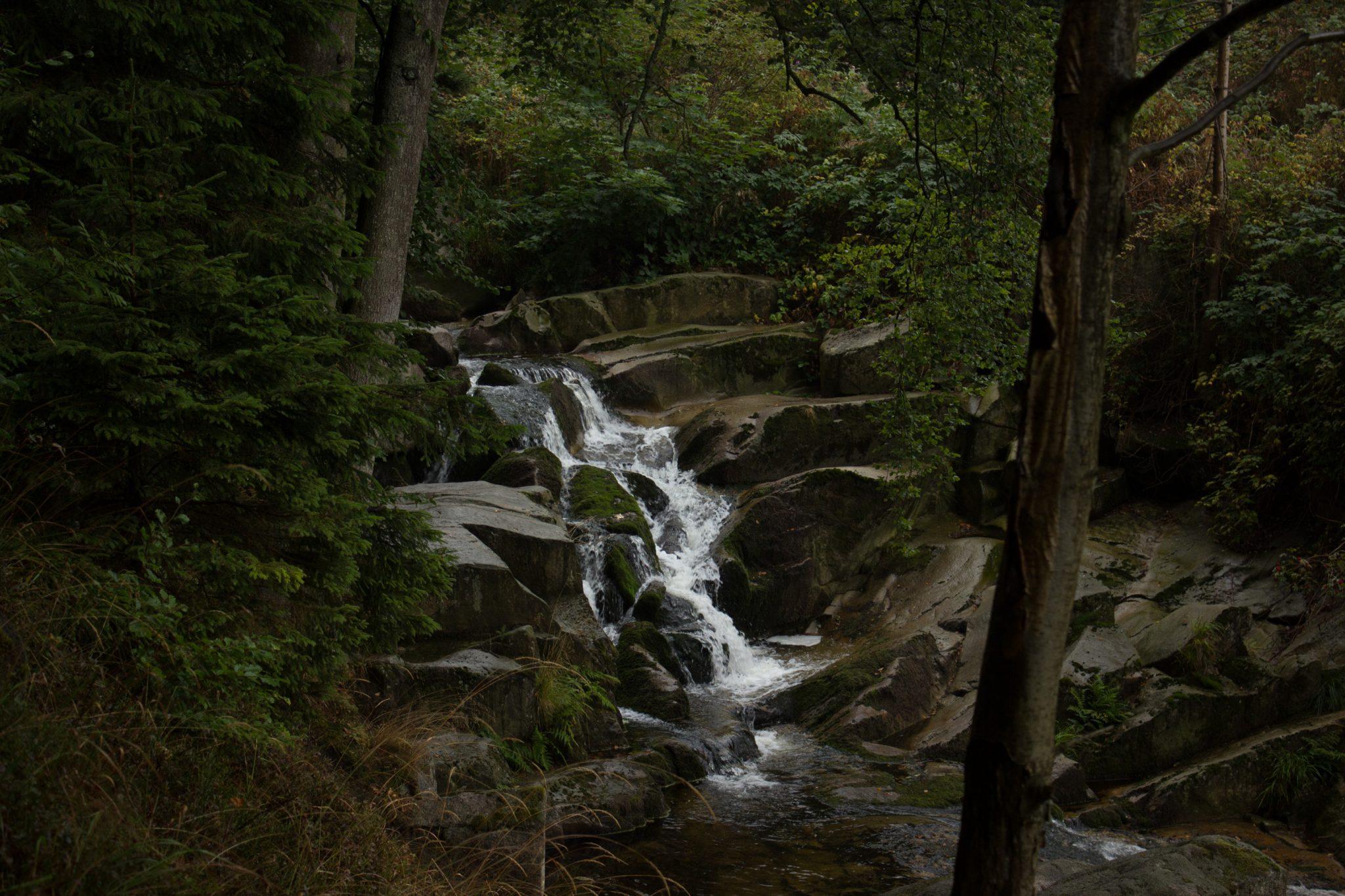Wanderung Brocken über Heinrich-Heine-Weg, Start in Ilsenburg, Nationalpark Harz, schöner Wanderweg im Wald entlang des Fluß Ilse, kleiner Wasserfall, atmosphärisch, herrliche frische Luft, viele Laubbäume, über Stock und Stein über schmalen Pfad