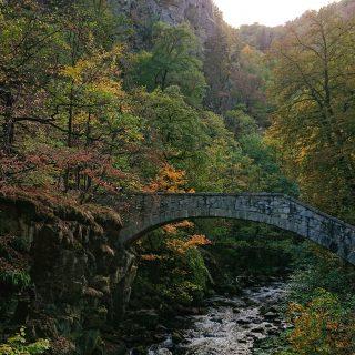 Rundwanderung Thale nach Treseburg - über Hexentanzplatz, Bodetal und Roßtrappe, Fluß Bode fließt durch Bodetal, Wanderung Richtung Thale, idyllisches, schönes Bodetal, beeindruckende Aussicht auf riesige Felswände, Teufelsbrücke zum Überqueren der Bode